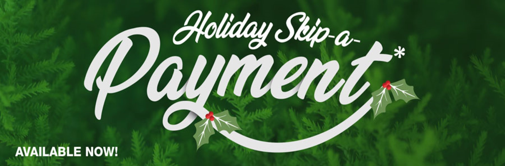 DECEMBER HOLIDAY SKIP-A-PAY SPECIAL!